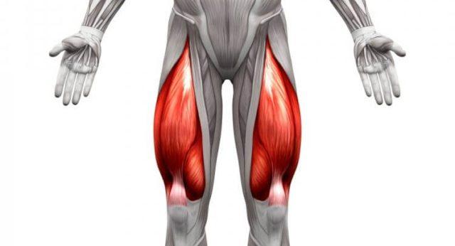 シシースクワット 大腿四頭筋