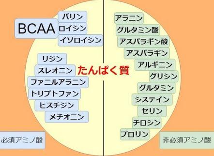 BCAAとは