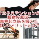 バックエクステンションの効果|腰痛の原因?脊柱起立筋を鍛える