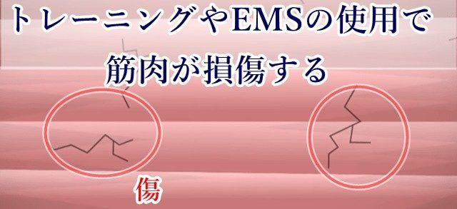 EMSの効果的な使い方