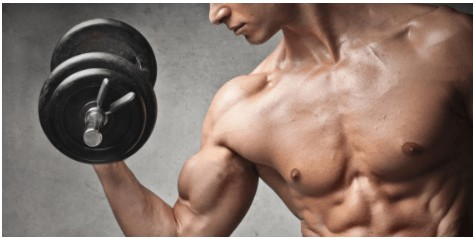 筋肥大におすすめのプロテイン